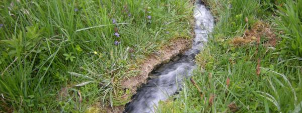 Минерална вода са извора Бања у селу Ракова бара