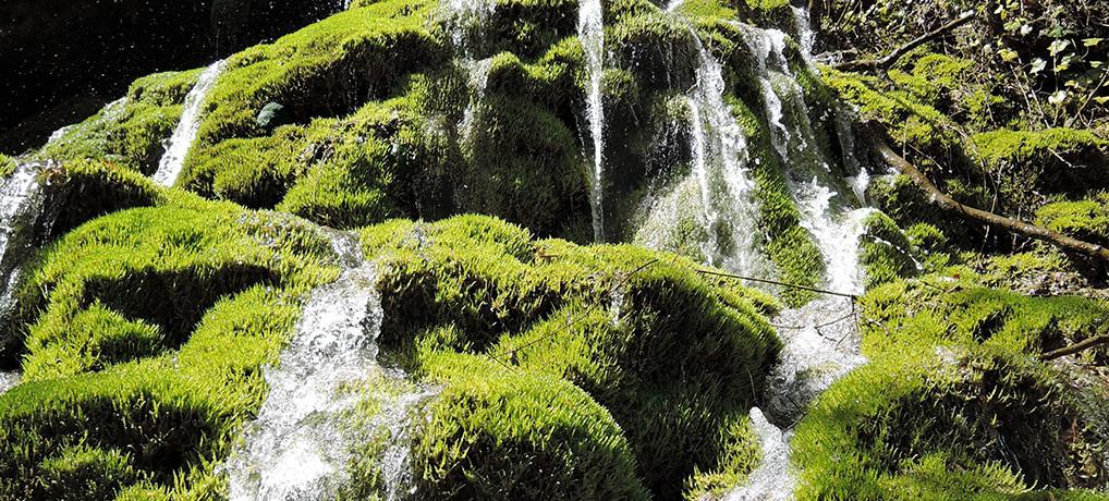 Водопади и врела